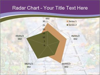 0000074837 PowerPoint Templates - Slide 51