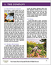 0000074837 Word Templates - Page 3