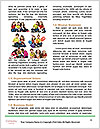 0000074843 Word Template - Page 4