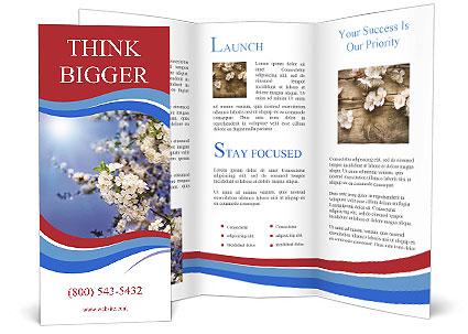 0000074844 Brochure Template