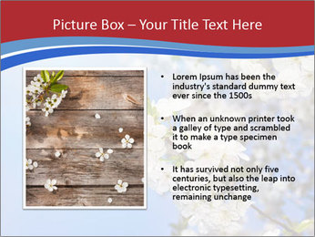 0000074844 PowerPoint Template - Slide 13