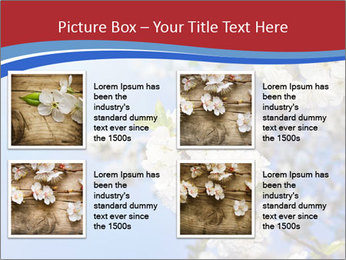 0000074844 PowerPoint Template - Slide 14