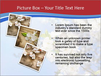 0000074844 PowerPoint Template - Slide 17
