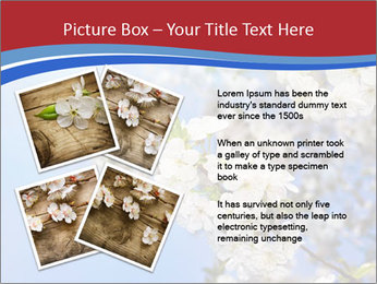 0000074844 PowerPoint Template - Slide 23