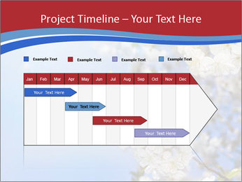 0000074844 PowerPoint Template - Slide 25