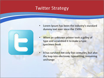 0000074844 PowerPoint Template - Slide 9