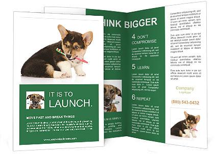 0000074868 Brochure Templates