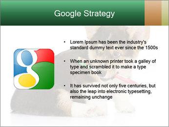 0000074868 PowerPoint Template - Slide 10