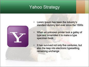 0000074868 PowerPoint Template - Slide 11