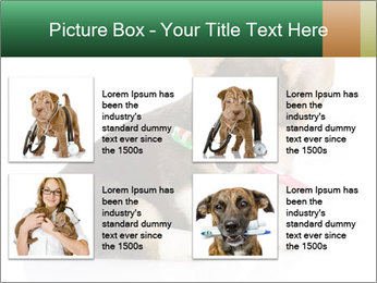 0000074868 PowerPoint Template - Slide 14