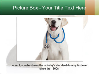 0000074868 PowerPoint Template - Slide 16