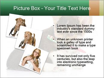 0000074868 PowerPoint Template - Slide 17