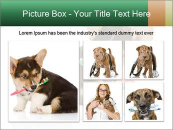 0000074868 PowerPoint Template - Slide 19