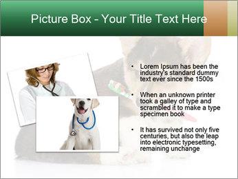 0000074868 PowerPoint Template - Slide 20