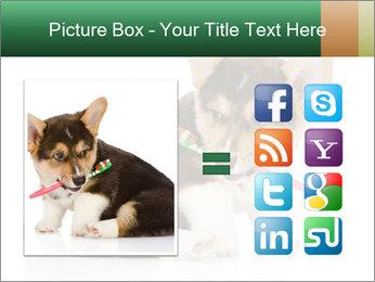 0000074868 PowerPoint Template - Slide 21