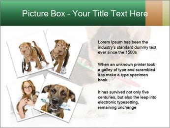 0000074868 PowerPoint Template - Slide 23