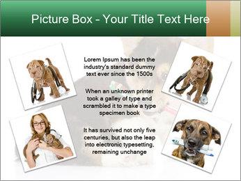 0000074868 PowerPoint Template - Slide 24