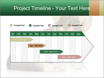 0000074868 PowerPoint Template - Slide 25