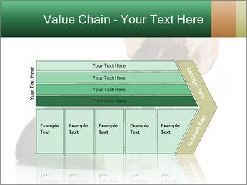 0000074868 PowerPoint Template - Slide 27