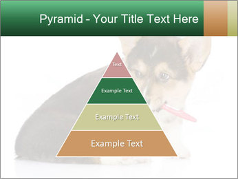 0000074868 PowerPoint Template - Slide 30