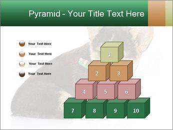 0000074868 PowerPoint Template - Slide 31