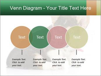 0000074868 PowerPoint Template - Slide 32