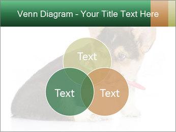 0000074868 PowerPoint Template - Slide 33