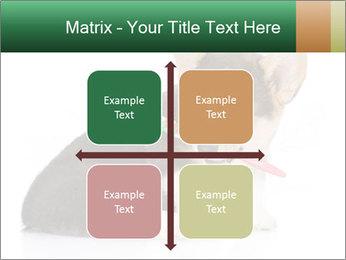 0000074868 PowerPoint Template - Slide 37
