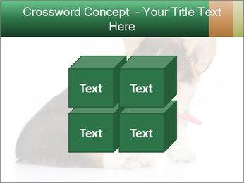 0000074868 PowerPoint Template - Slide 39