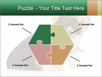 0000074868 PowerPoint Template - Slide 40