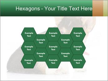 0000074868 PowerPoint Template - Slide 44