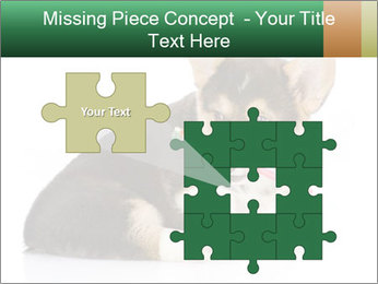 0000074868 PowerPoint Template - Slide 45