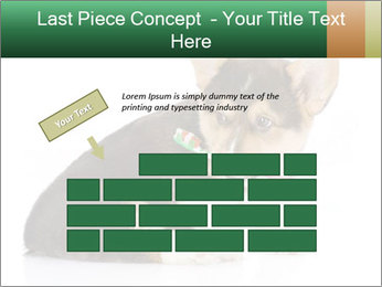 0000074868 PowerPoint Template - Slide 46