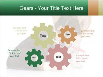 0000074868 PowerPoint Template - Slide 47