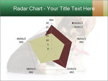 0000074868 PowerPoint Template - Slide 51
