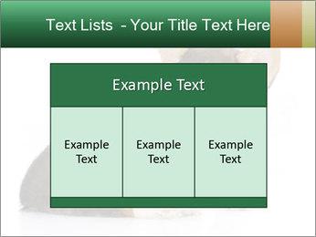 0000074868 PowerPoint Template - Slide 59