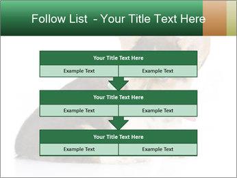 0000074868 PowerPoint Template - Slide 60