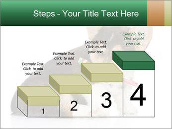 0000074868 PowerPoint Template - Slide 64