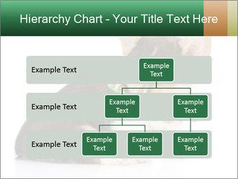 0000074868 PowerPoint Template - Slide 67