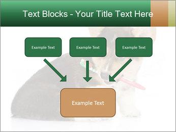 0000074868 PowerPoint Template - Slide 70