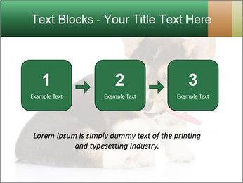 0000074868 PowerPoint Template - Slide 71