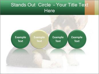 0000074868 PowerPoint Template - Slide 76
