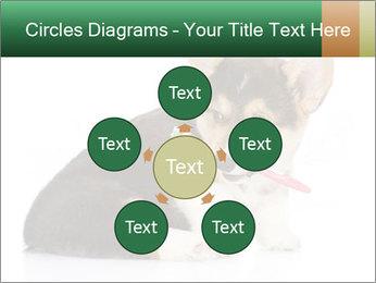 0000074868 PowerPoint Template - Slide 78