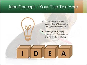 0000074868 PowerPoint Template - Slide 80