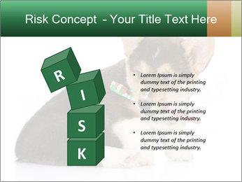 0000074868 PowerPoint Template - Slide 81