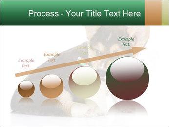 0000074868 PowerPoint Template - Slide 87