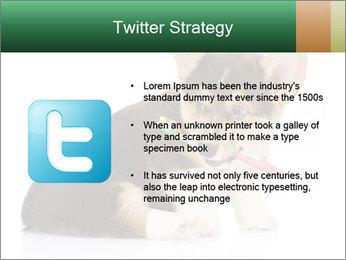 0000074868 PowerPoint Template - Slide 9