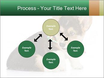 0000074868 PowerPoint Template - Slide 91