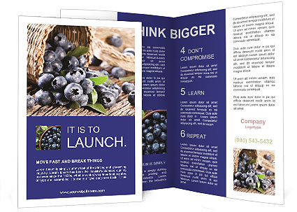 0000074878 Brochure Template