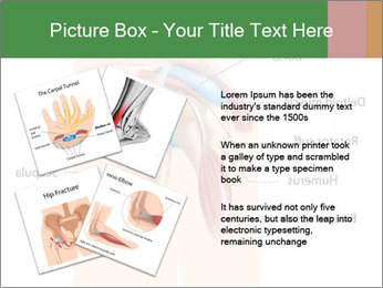 0000074885 PowerPoint Template - Slide 23